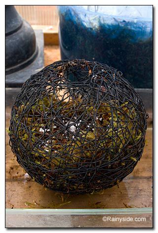 17 Best Images About Twig Balls Willow Balls Amp Grapevine