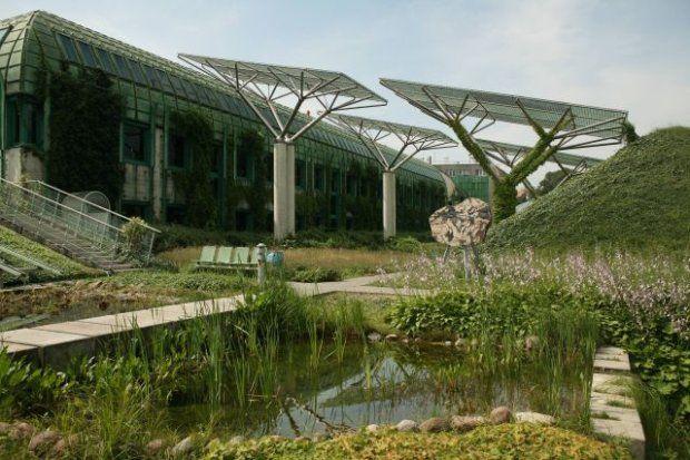 Biblioteka Uniwersytetu Warszawskiego, tzw. Nowy BUW - ogrody na dachu