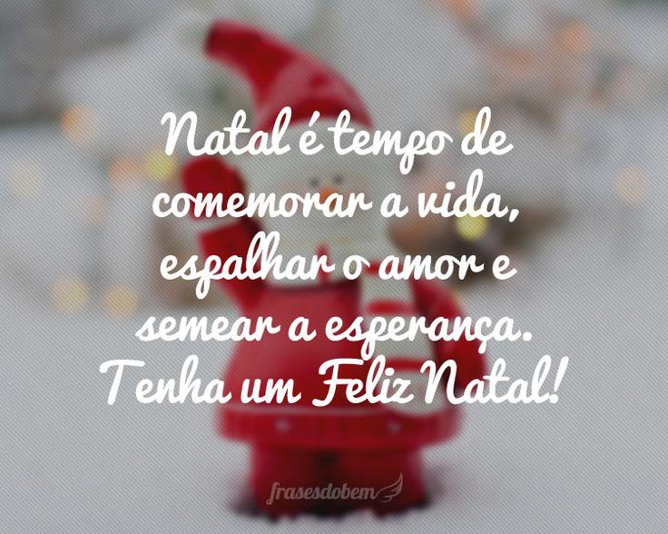 Natal é tempo de comemorar a vida, espalhar o amor e semear a esperança. Tenha um Feliz Natal!