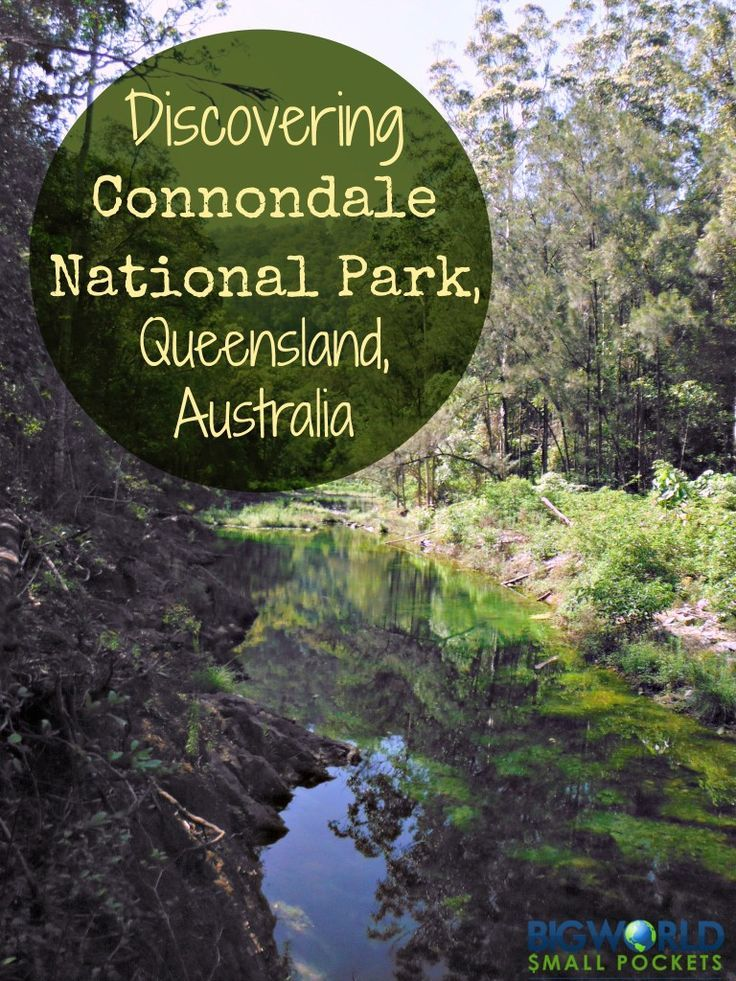 Discovering Conondale National Park, Queensland, Australia {Big World Small Pockets}