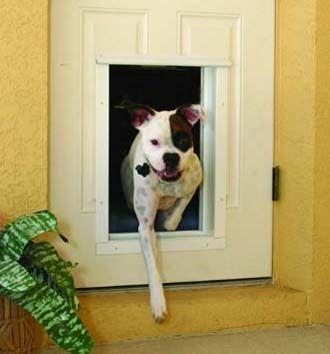 RFID doggie door