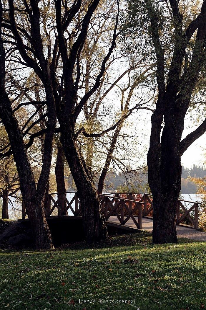 arboretum, tampere, finland