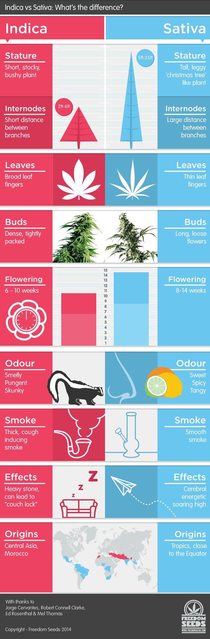Indica-vs-Sativa-infographic. Save money, grow your own marijuana and make small edible delicious marijuana candies. MARIJUANA - Guide to Buying, Growing, Harvesting, and Making Medical Marijuana Oil and Delicious Candies to Treat Pain and Ailments by Mary Bendis, Second Edition. Just $2.99 for great e-book! www.muzzymemo.com