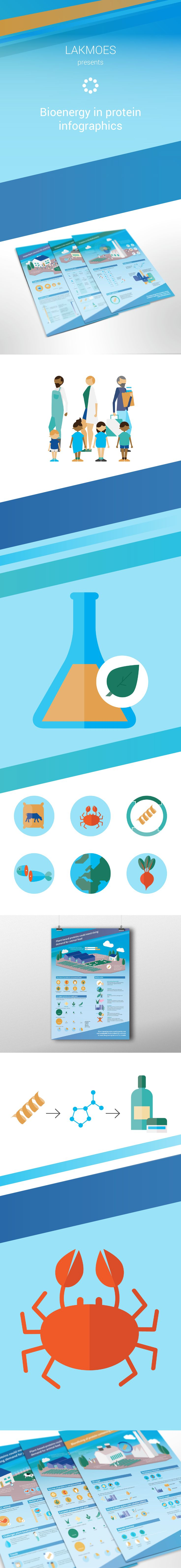 Infographics for science: Bioenergy & protein #studiolakmoes #infographics #science #icondesign