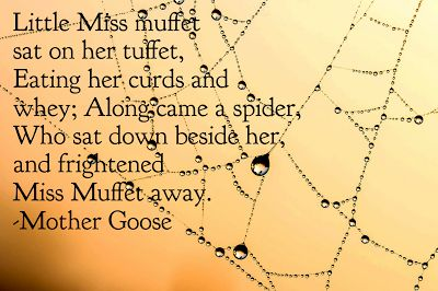 Read, Learn and Shine: Why...Little Miss Muffet?