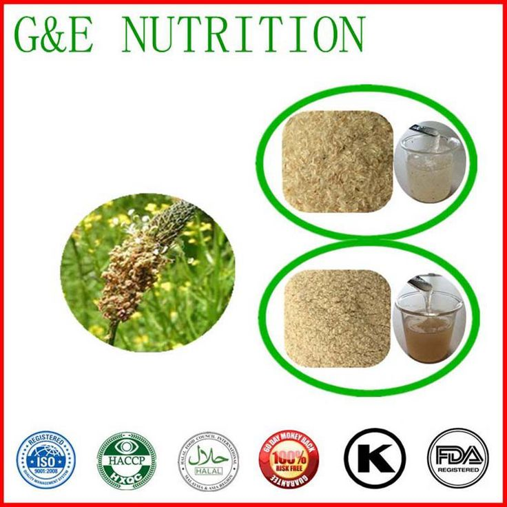 Top quality Psyllium Seed Husks Powder with best price   100g 10:1