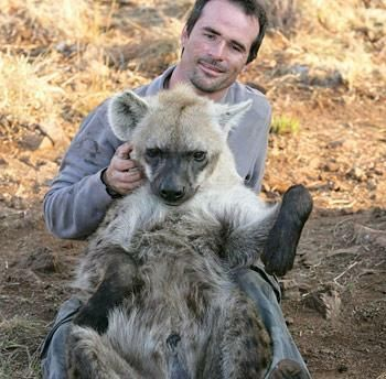 His charm works with hyenas and cougars too. Hyenas are usually vicious.    Read more: http://www.unp.me/f44/ranger-in-africa-nice-pics-62396/#ixzz1s9IfRbGk