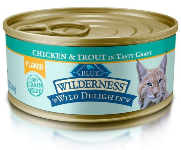 Best Wet Cat Foods You Can Feed Your Cat Canned Cat Food Cat Food Wet Cat Food
