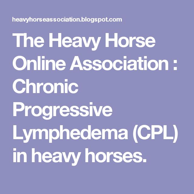 The Heavy Horse Online Association : Chronic Progressive Lymphedema (CPL) in heavy horses.