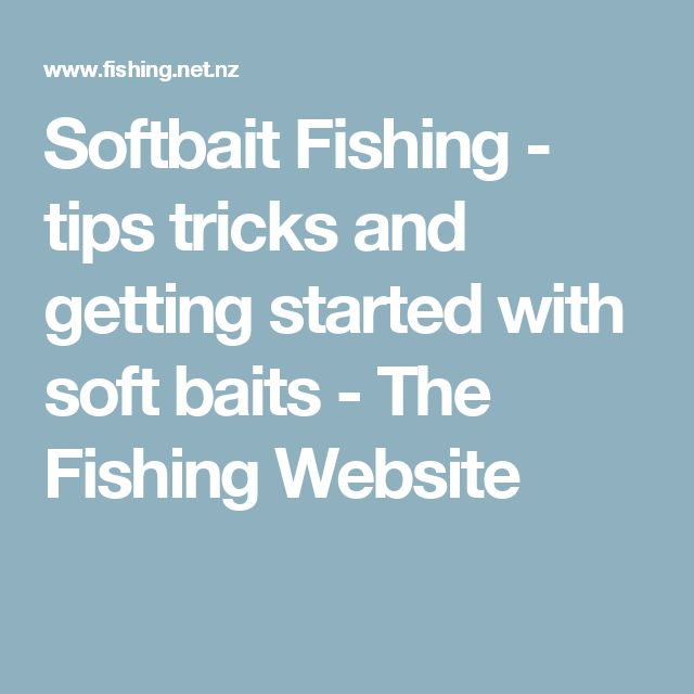 Softbait Fishing - tips tricks and getting started with soft baits - The Fishing Website
