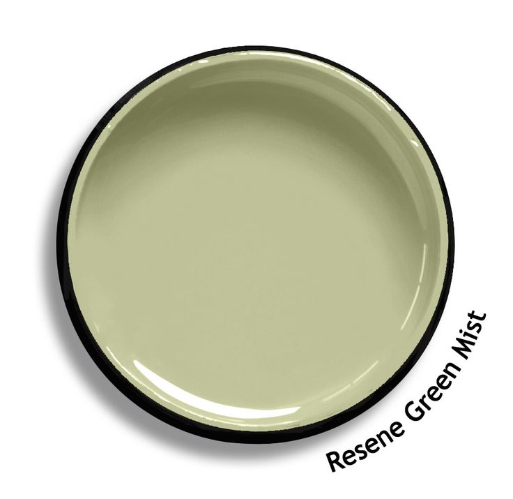 Resene Green Mist is a pale moss green, restful and sedate. From the Resene Heritage colours collection. Try a Resene testpot or view a physical sample at your Resene ColorShop or Reseller before making your final colour choice. www.resene.co.nz