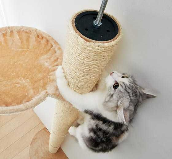 Cat Tree Climbing Tower Is A Post With The Most! | PetsLady.com