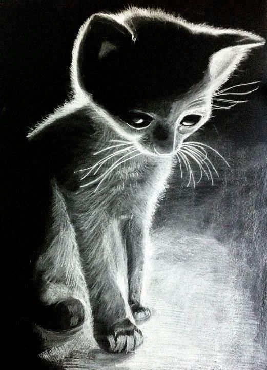 Little kitty - drawing https://www.facebook.com/StefanMarcuArt