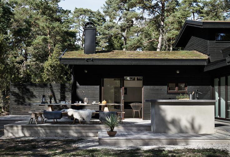 m.arkitektur- Skogshus vid strand4
