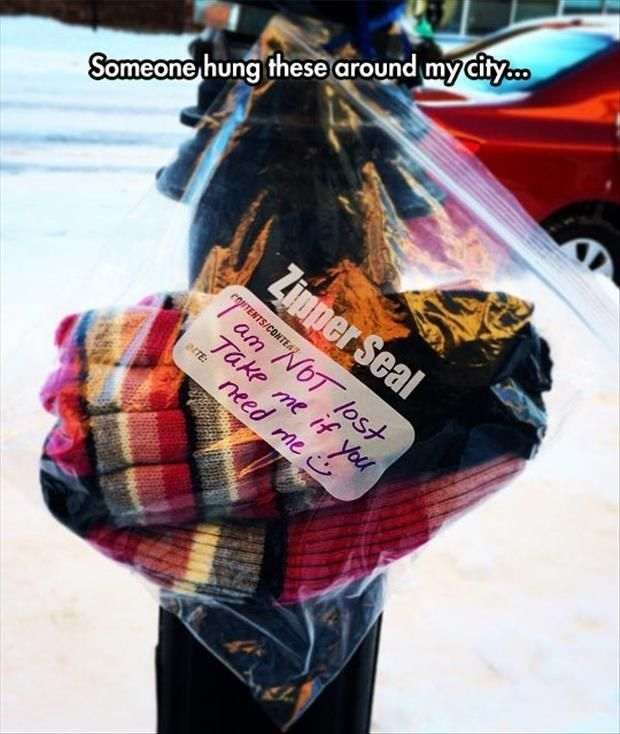 These winter warmth packages around a city: | 28 Pictures That Prove 2015 Wasn't A Completely Terrible Year