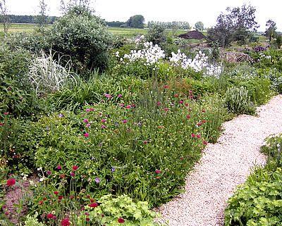 tuin aanleggen - bloemenborder: onderhoud wieden van de perkjes, winteronderhoud, tips-> principe van grazen: dat vervelende gras aftrekken in plaats van uitgraven