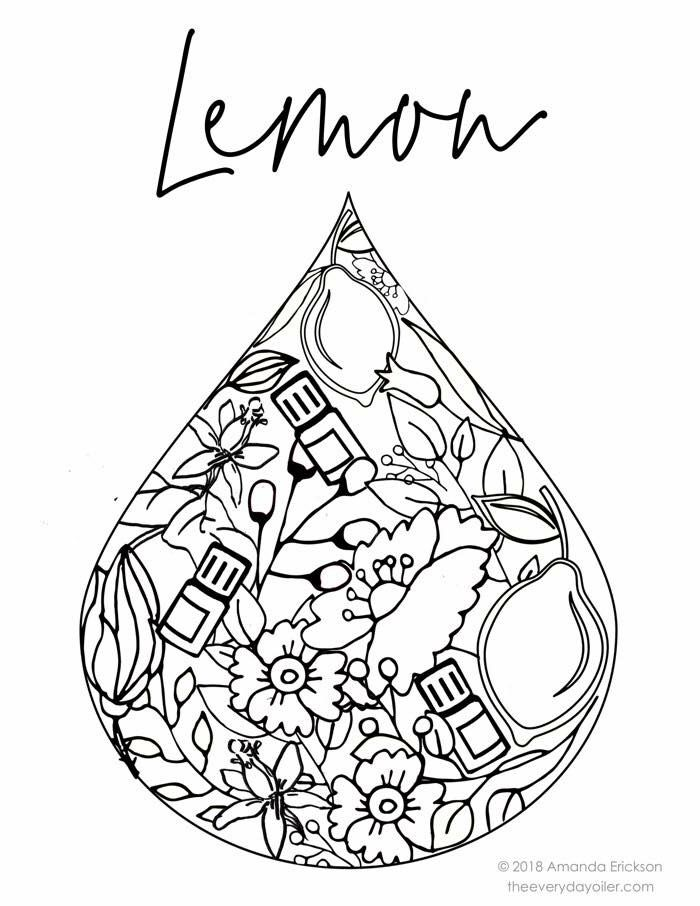Lemon Coloring Page Coloring Pages Coloring Book Pages Color