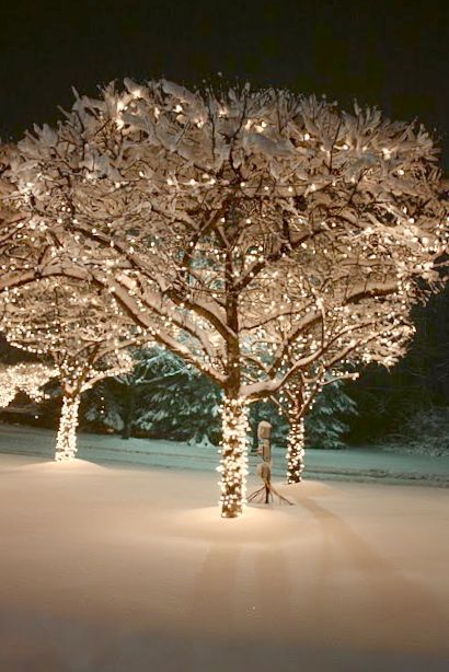 A Winter's Evening...  #whitechristmaslights: