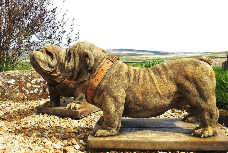 Discount Garden Statues Ltd - EXCLUSIVE Pair of Hand Made in England Standing British Bulldog Garden Ornament Statue , £299.00 (http://www.discountgardenstatues.co.uk/exclusive-pair-of-hand-made-in-england-standing-british-bulldog-garden-ornament-statue/)