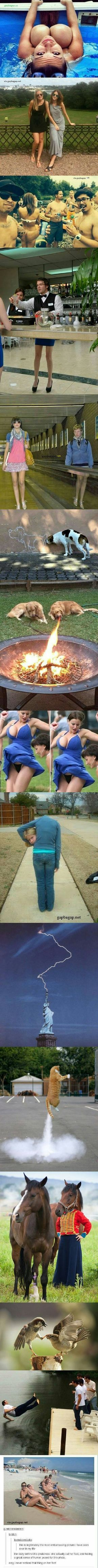 Top 15 Perfectly Timed Funny Pictures And Last One is The Best