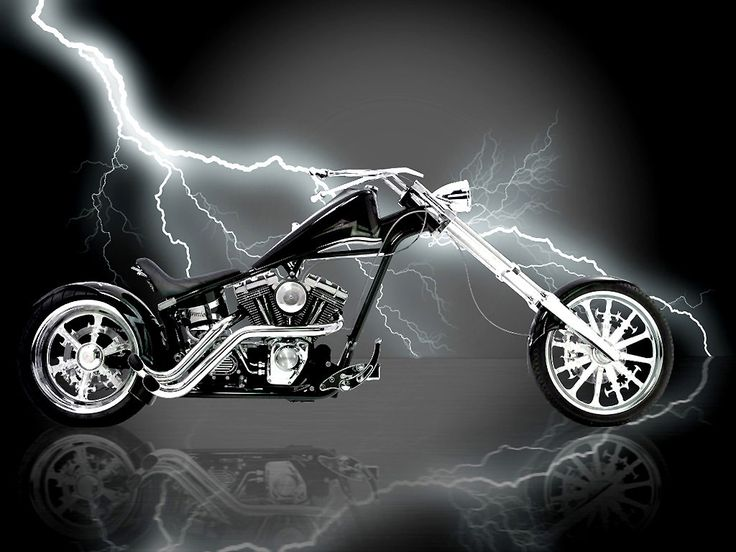 Harley Davidson Logo Wallpaper You Are Viewing The Bikes