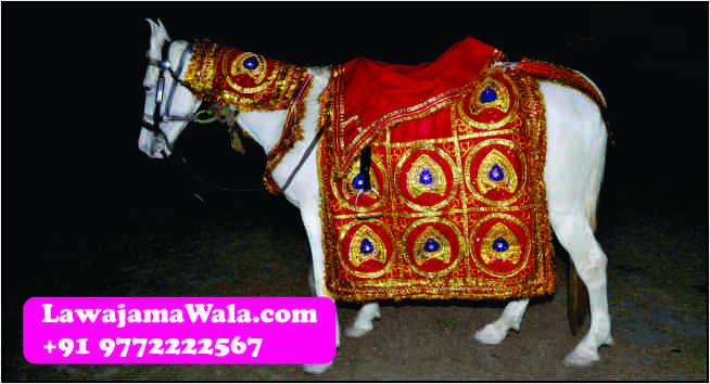 Wedding Band, Punjabi Dhol, Nagada, Chariot, Pagdi/Turbans/Safa, Mashal, Dulhan Doli Rental, Dandia Party, Ghori, Flower Umbrella/Chattar, Elephants & Camels, Tasha, Turai, Fire Acts, Dulhan Chatar, Millitary Band, Wedding Procession Light, Fire Works(Atishbazi), Rajasthani Folk Singers Call Raju Bhai + 91 9772222567