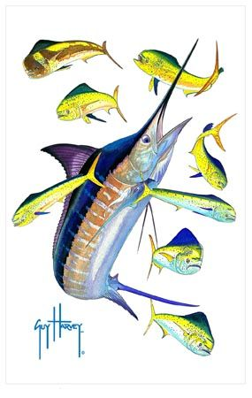 37 best images about guy harvey paintings on pinterest lighthouses guy harvey shirts and art. Black Bedroom Furniture Sets. Home Design Ideas