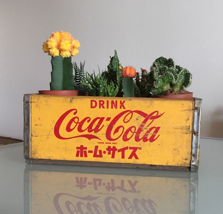 #Japanische #Coca-Cola #Kiste aus den #60er Jahren. Die Box weist an einigen Stellen abgeblätternte Farbe, leichte Risse und Gebrauchsspuren auf. Die Metallteile sind kaum verrostet. Die #Box ist für ihr Alter in sehr gutem Zustand.  #upcycling #sustainable #sustainablychic #decoration #vintagedecor #industrialchicdecor #deco #vintagedecoration #vintagedecore #decor #homedecor #reused #redesign #upcyclingindustry #upcyclingdesign #recycling #recycled #upcycled #secondhand #diymöbel