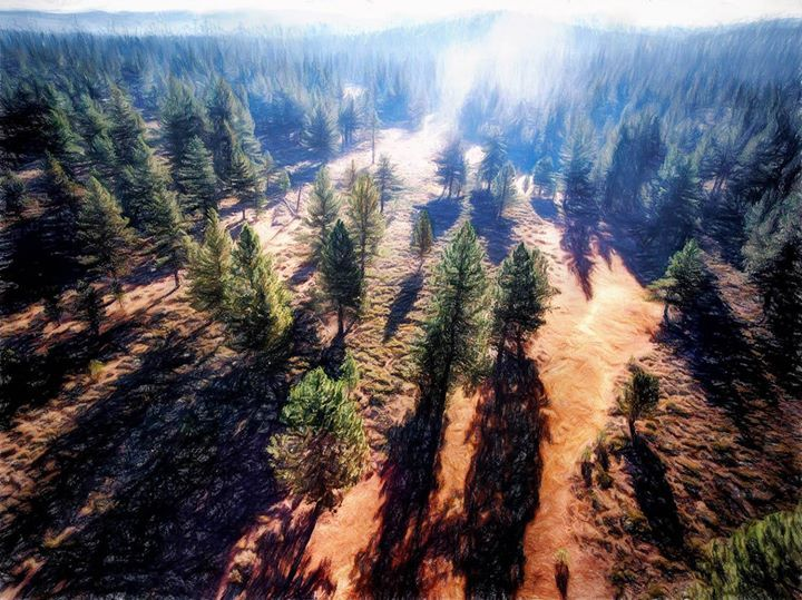 """""""Casting Shadows"""": Truckee CA In my dreams when I fly it's often at about this height. It's such a miracle to me that I can now photograph the incredible light shadows and the staggeringly beautiful world that they define from here! I've dreamed about it imagined it really hard wanted to do it myself but didn't have the right kind of wings to pull it off. Besides I looked stupid flapping my arms! ha.   Now I can fly. And it's a wondrous thing. I wrote about my first steps with a DJI Phantom…"""