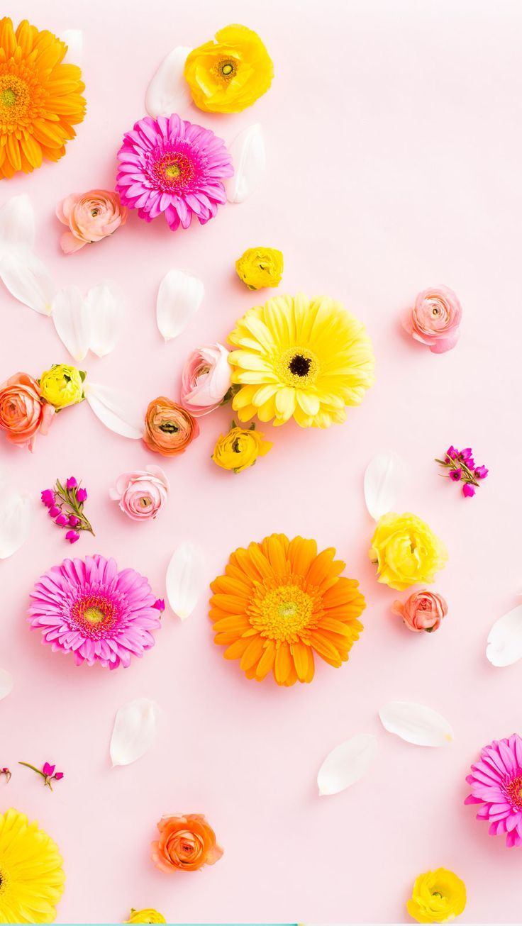 Best 25 flower phone wallpaper ideas only on pinterest - Flower wallpaper for phone ...