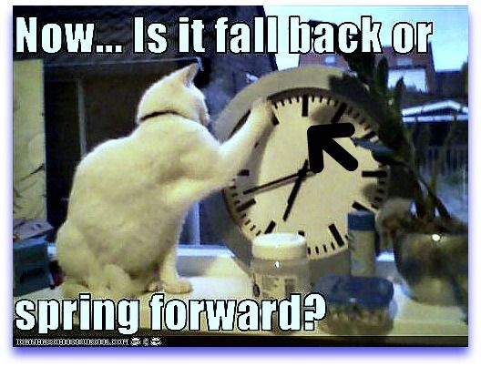 spring-forward-fall-back How It Started!