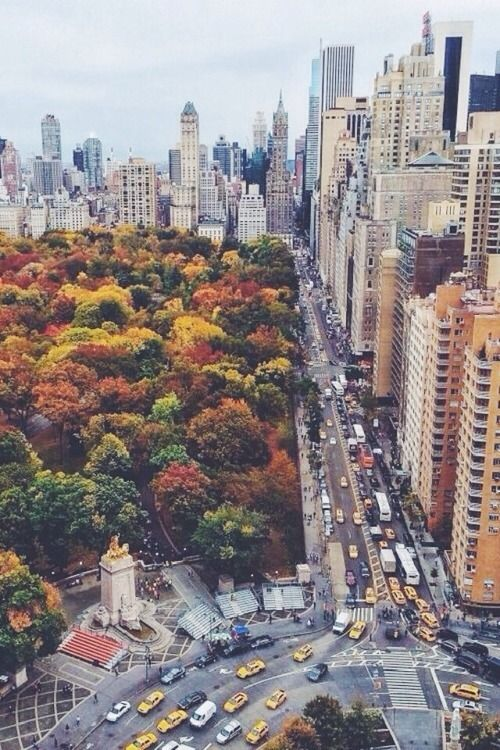 Central Park South, NYC in the Fall -- we're seriously feeling the love for this city, dressed in gorgeous fall foliage!