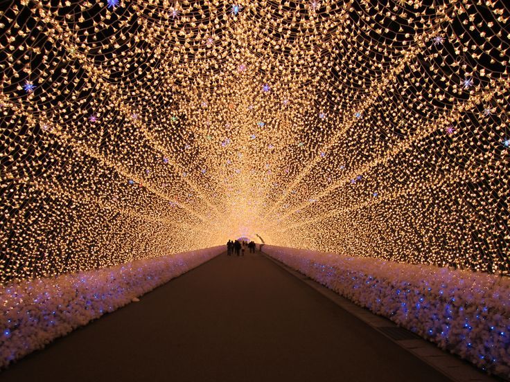 Every winter, a magical light show takes place with over 7 million LED lights illuminating an arboretum with endless tunnels in a place called Nabana No Sato