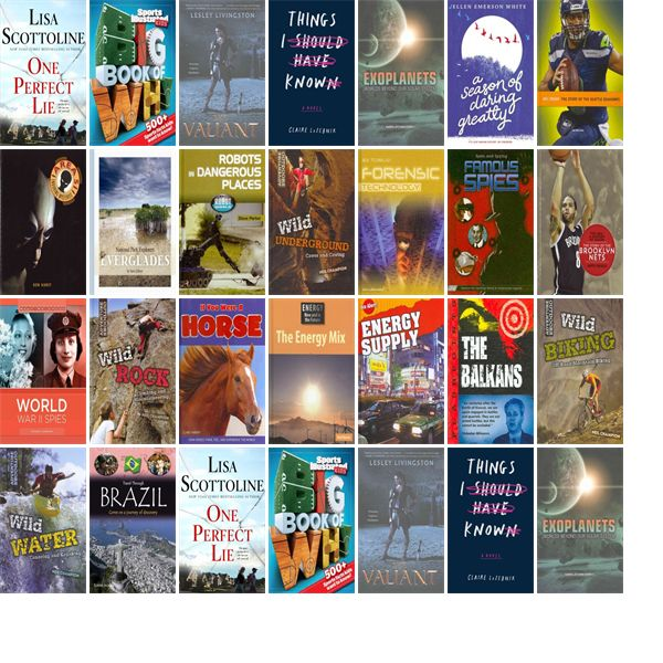 """Wednesday, April 12, 2017: The La Porte County Public Library has one new bestseller, 18 new children's books, and six other new books.   The new titles this week include """"One Perfect Lie,"""" """"Sports Illustrated Kids Big Book of Why Sports Edition,"""" and """"The Valiant."""""""