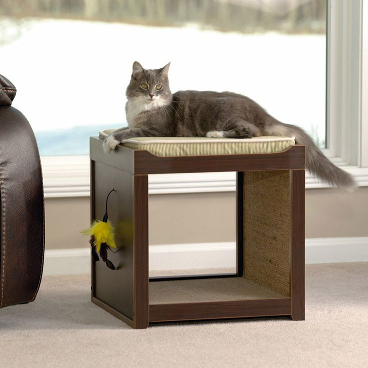 Sauder Interactive Cat Cube, Brown