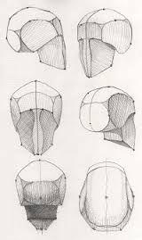 Картинки по запросу стадики черепа