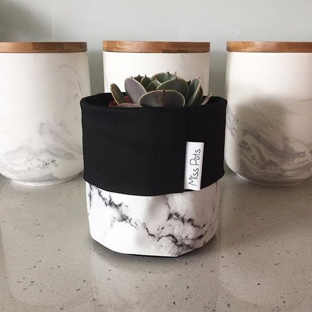 Who else out there has a serious addiction to marble?.. Well we now have Marble plant pouches available in our Kilsyth store!! (Succulents included) From the lovely @misspotspouches #misspotpouches #dcbdesigns #fabricpouches #marble #marbleaddiction #kilsyth #yarraranges #mtdandenong #succulents