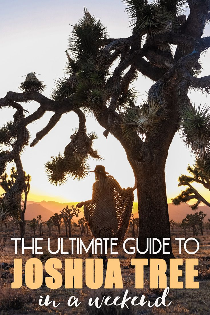 Welcome to Joshua Tree, the site of a huge national park and a handful of eclectic towns in the middle of a vast wilderness. Named after the native yucca brevifolia, the beautiful desert will amaze you with its serene beauty. The park straddles the cactus-dotted Colorado Desert and the Mojave Desert, and overlooks the Coachella Valley. Here's my guide to Joshua Tree in a adventure-filled weekend!