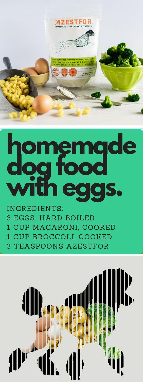 De 32 bsta homemade dog food recipes bilderna p pinterest homemade dog food with eggs forumfinder Image collections