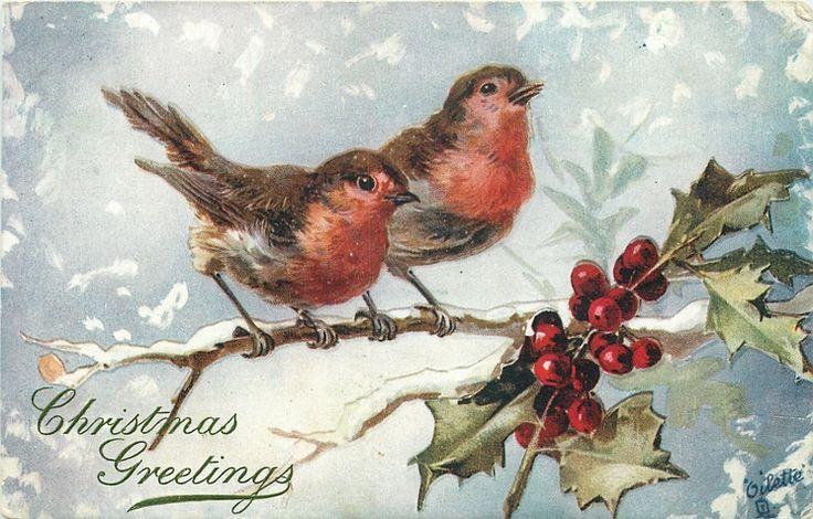 ■ Tuck DB...      two robins on a snowy branch, holly right, snowing  (c.1906)