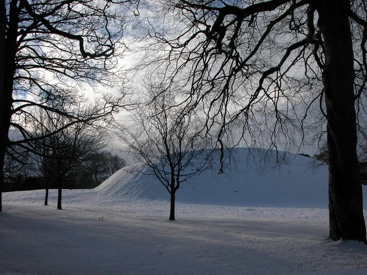 Please do not disturb. Edinburgh wintergarden.