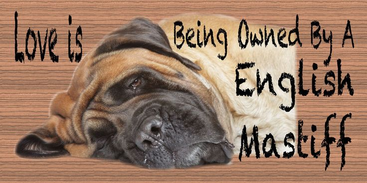 407 English Mastiff Wood Plaque Dog Animal Pets Dogs Sign Wall Art Pet Gift #GiggleSticks #Traditional