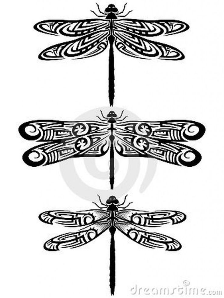 24 best tribal dragonfly images on