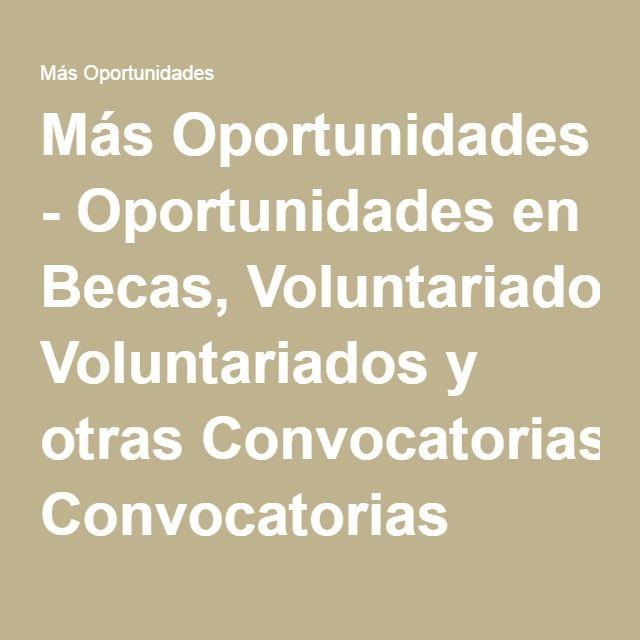 Más Oportunidades - Oportunidades en Becas, Voluntariados y otras Convocatorias