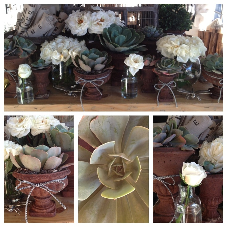 table display.. succulents and roses in vintage urns!