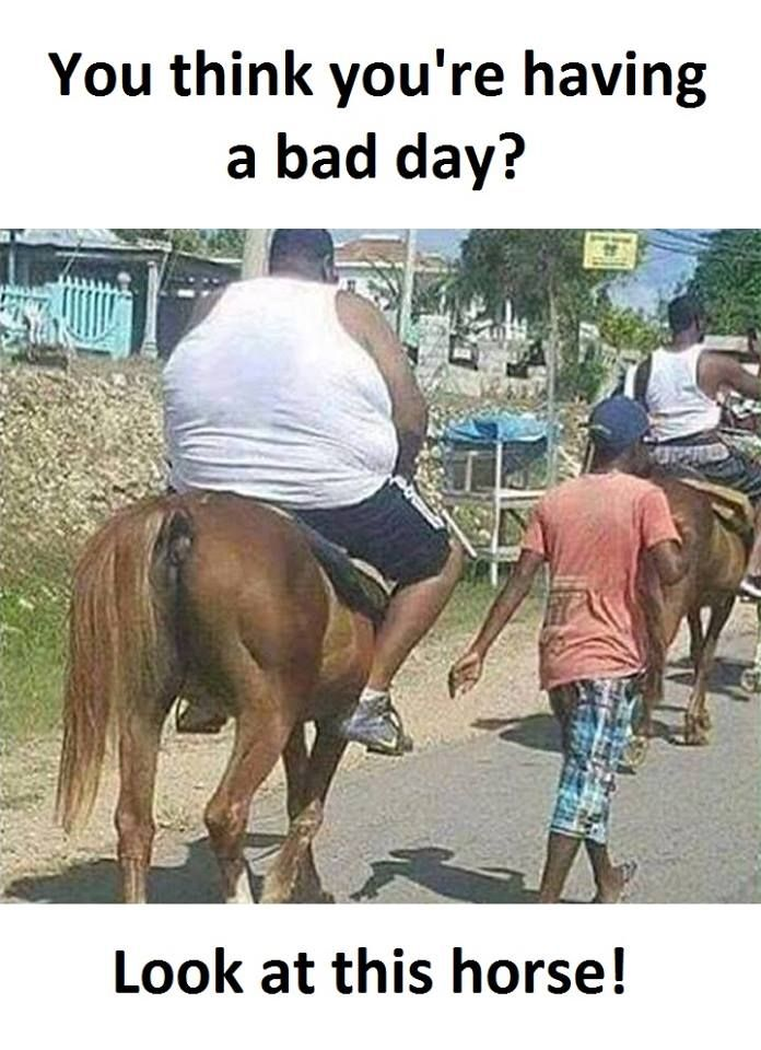 Funny Memes For A Bad Day At Work : Had a bad day meme pictures to pin on pinterest daddy
