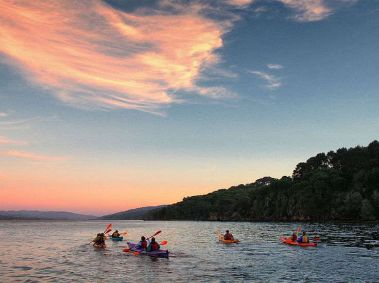 Staycation in Tomales Bay, California: The Perfect Weekend Getaway in Tomales Bay, California - Condé Nast Traveler