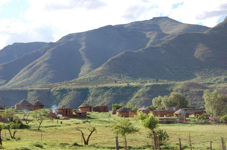 Malea lea, Lesotho