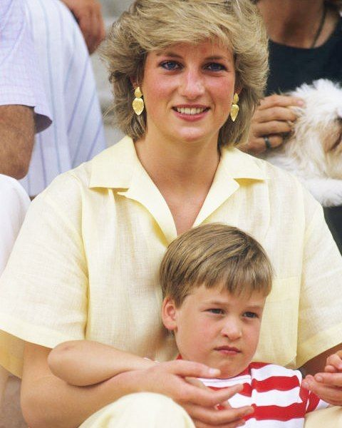 an overview of a farewell to princess diana Elizabeth ii (elizabeth alexandra  and the death in 1997 of her former daughter-in-law diana, princess of wales  was called her farewell tour in the press.