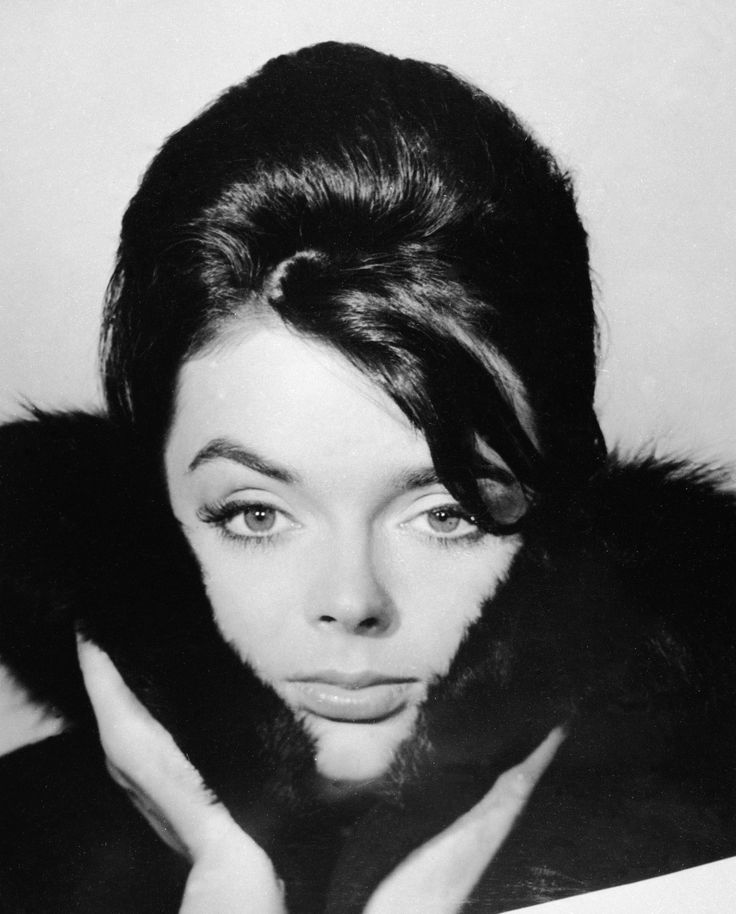 barbara steele biography